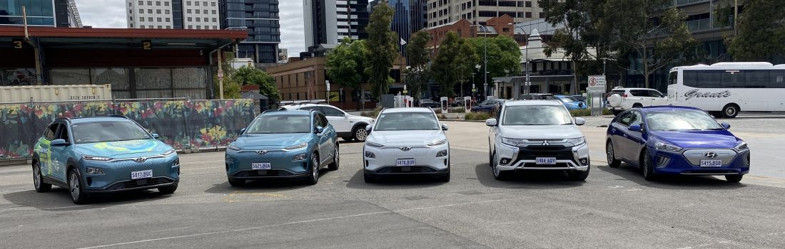 Electric vehicles in the fleet